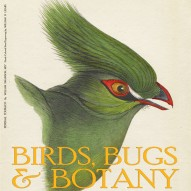 THE ARTFUL MIND MAY 2013: BIRDS, BUGS, & BOTANY