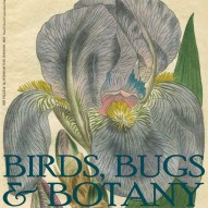 THE ARTFUL MIND JULY 2013: BIRDS, BUGS, & BOTANY