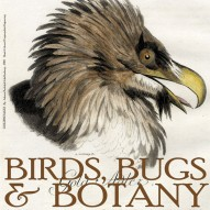 THE ARTFUL MIND AUGUST 2013: BIRDS, BUGS, & BOTANY