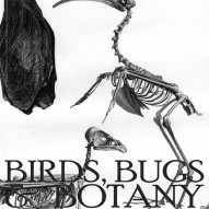 THE ARTFUL MIND October 2013: BIRDS, BUGS, & BOTANY