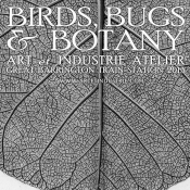 THE ARTFUL MIND November 2013: BIRDS, BUGS, & BOTANY